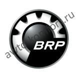 Масла для 2-х тактных двигателей  BRP