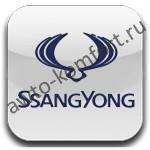 Переходная рамка для автомобиля SsangYong